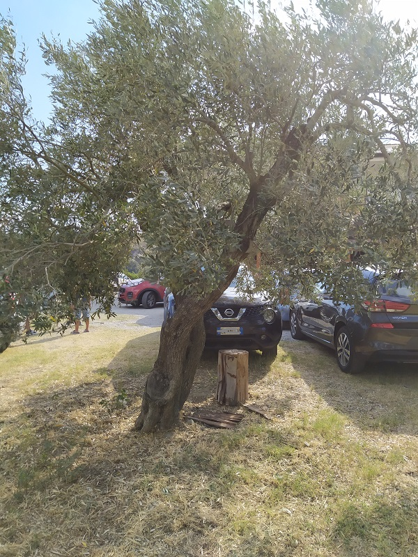 Parking at the agriturismo