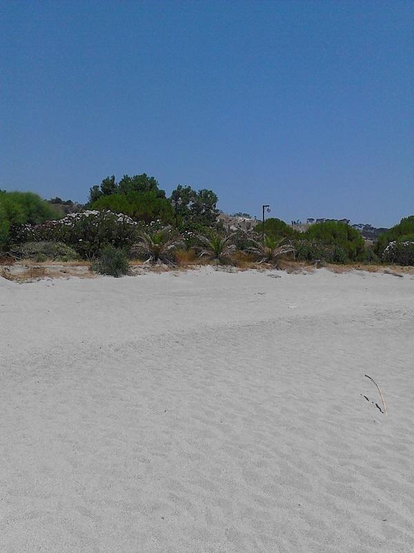 A gorgeous beach in Calabria