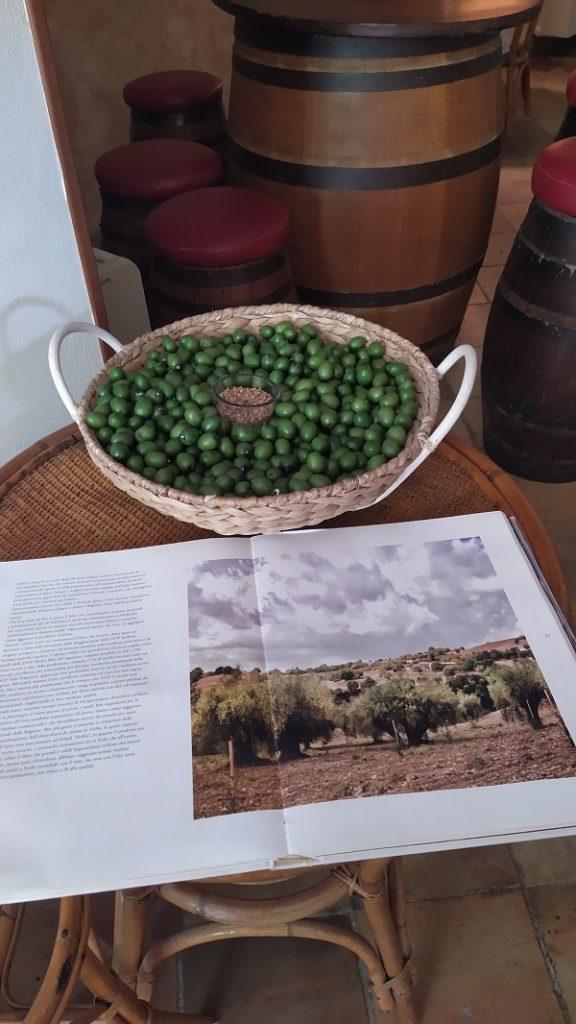 The farmhouse olives